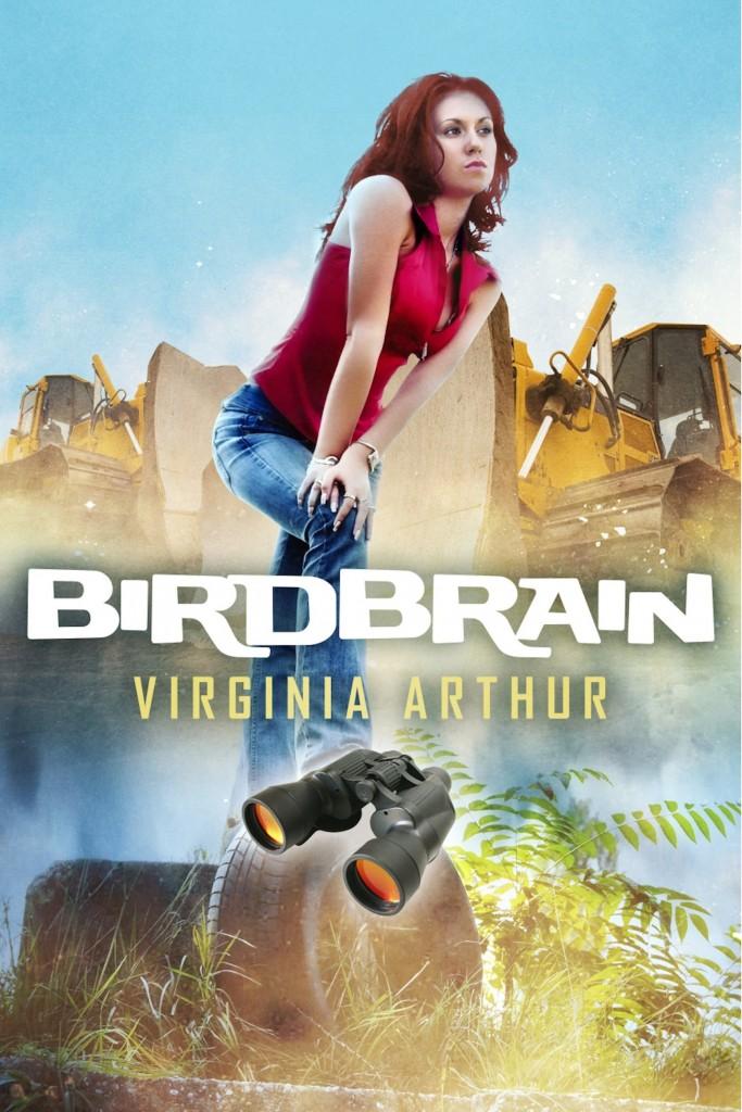 birdbrain_cover(2)