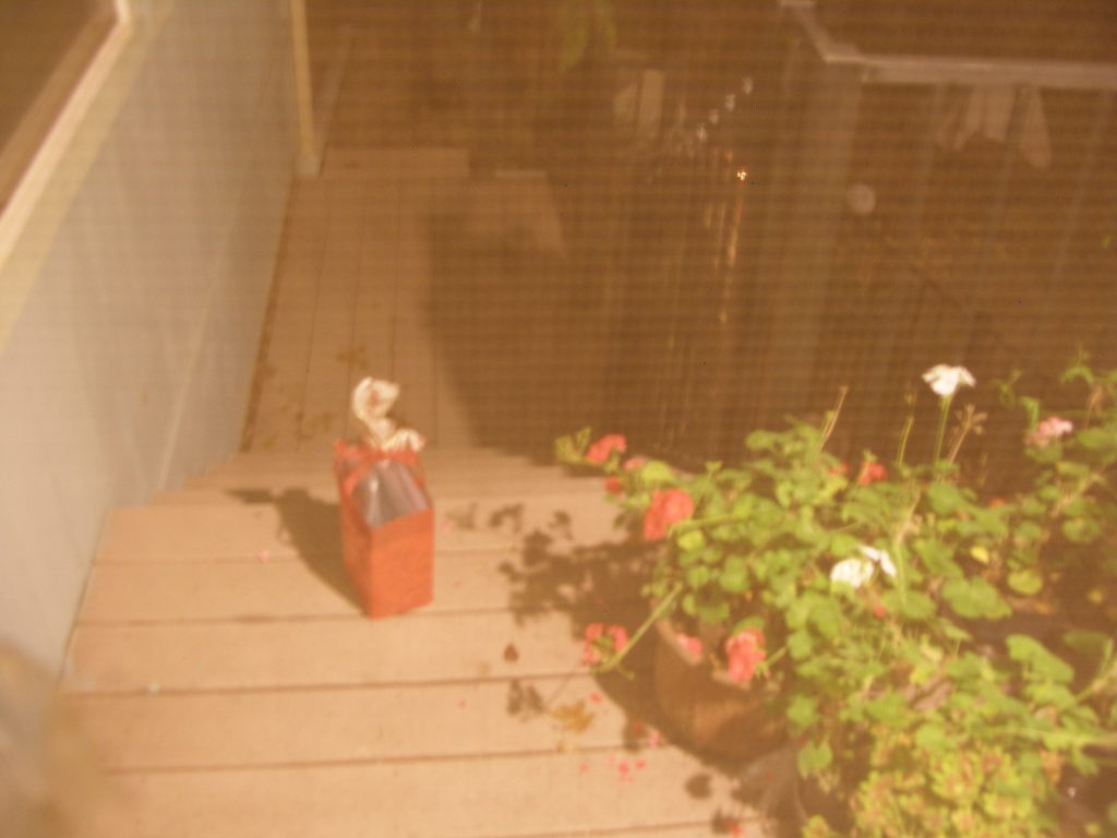 Photo of a Christmas present sitting alone on top step of house porch.